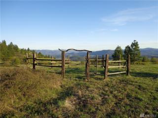 0-Middle Rainy Ridge Rd, Inchelium, WA 99138 (#927546) :: Ben Kinney Real Estate Team