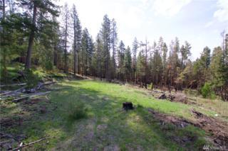 1839 Tunk Creek Rd, Riverside, WA 98849 (#932204) :: Ben Kinney Real Estate Team