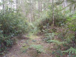 0-TR 97-98 NE Mountain View Dr, Tahuya, WA 98588 (#935496) :: Ben Kinney Real Estate Team