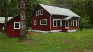 998 North Shore Rd, Quinault, WA 98526 (#936996) :: Ben Kinney Real Estate Team