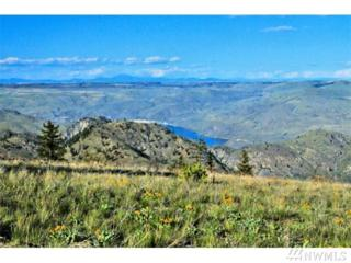 1250 Ridgecrest Dr, Chelan, WA 98816 (#937776) :: Ben Kinney Real Estate Team