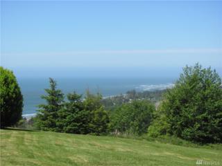 15-xx Panoramic Lane, Tokeland, WA 98590 (#939041) :: Ben Kinney Real Estate Team