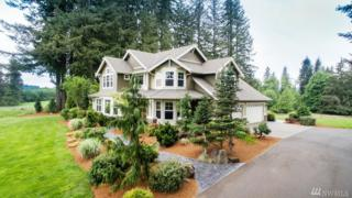 13900 NE Grantham Rd, Amboy, WA 98601 (#939768) :: Ben Kinney Real Estate Team