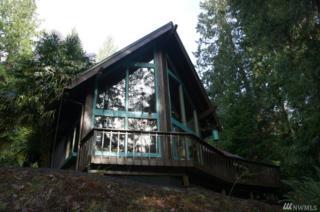 30 Elk Ct E, Brinnon, WA 98320 (#939895) :: Ben Kinney Real Estate Team