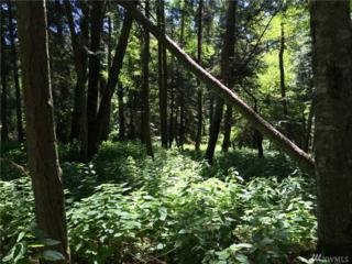 0 Pioneer Hill Rd, Orcas Island, WA 98245 (#940585) :: Ben Kinney Real Estate Team