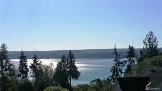 0-Lot 2 Maxview Dr, Port Ludlow, WA 98365 (#940872) :: Ben Kinney Real Estate Team