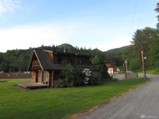 4208 Mt Baker Hwy, Everson, WA 98247 (#940882) :: Ben Kinney Real Estate Team