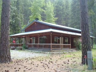 173-A West Fork Rd, Conconully, WA 98819 (#942152) :: Ben Kinney Real Estate Team