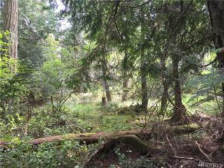 276 Ben Nevis Lp, Shaw Island, WA 98286 (#945987) :: Ben Kinney Real Estate Team