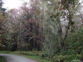 0 Emerald Lane, Marblemount, WA 98267 (#947073) :: Ben Kinney Real Estate Team