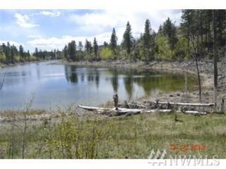 148 Madd Mountain Rd, Omak, WA 98840 (#950058) :: Ben Kinney Real Estate Team