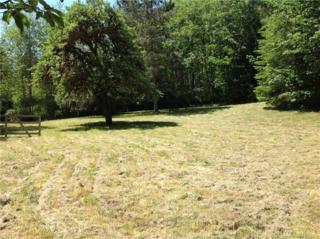 9999 Leland Valley Hwy W, Quilcene, WA 98376 (#952646) :: Ben Kinney Real Estate Team