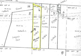 0-Lot 3&6 Harkum Rd, Pe Ell, WA 98572 (#952654) :: Ben Kinney Real Estate Team