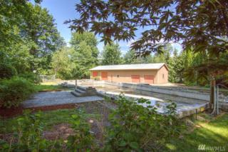 5193 Galbraith Rd, Acme, WA 98220 (#953816) :: Ben Kinney Real Estate Team
