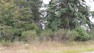 0-XXX E Hiawatha Blvd, Shelton, WA 98584 (#957308) :: Ben Kinney Real Estate Team