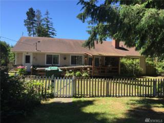 2591 Tokeland Rd, Tokeland, WA 98590 (#958856) :: Ben Kinney Real Estate Team