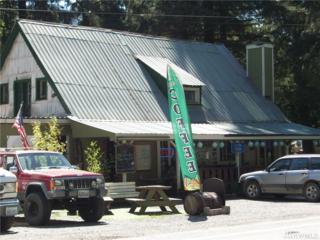 32518 Mountain Loop Hwy, Robe Valley, WA 98252 (#959832) :: Ben Kinney Real Estate Team