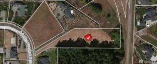 9314 Milburn Lp SE, Olympia, WA 98513 (#963571) :: Ben Kinney Real Estate Team