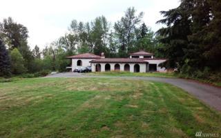 19713 92nd Ave S, Kent, WA 98031 (#963674) :: Ben Kinney Real Estate Team