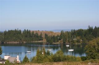0-Lot 19 Mats View Meadows, Port Ludlow, WA 98365 (#964567) :: Ben Kinney Real Estate Team