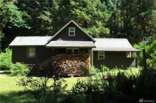 313 South Shore Road, Quinault, WA 98575 (#965560) :: Ben Kinney Real Estate Team