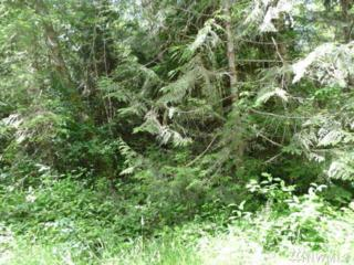 0-Lot 3 Alder Lane, Concrete, WA 98237 (#965824) :: Ben Kinney Real Estate Team