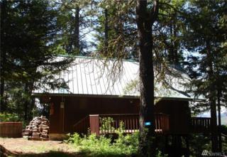 140 Hawkeye Lane, Ronald, WA 98940 (#969019) :: Ben Kinney Real Estate Team