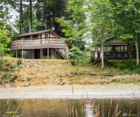 107 Tornow Dr, Elma, WA 98541 (#971977) :: Ben Kinney Real Estate Team