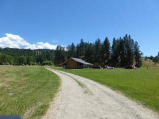 1234 Miller Lane, Malo, WA 99150 (#972308) :: Ben Kinney Real Estate Team