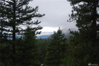 222 Fs 3525 Rd Summit Lake, Tonasket, WA 98855 (#973292) :: Ben Kinney Real Estate Team