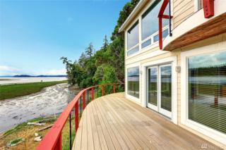18912 115th St KP, Gig Harbor, WA 98329 (#973800) :: Ben Kinney Real Estate Team