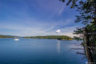 0-Lot 4 Plat Of Tibbs Landing, Shaw Island, WA 98286 (#975126) :: Ben Kinney Real Estate Team