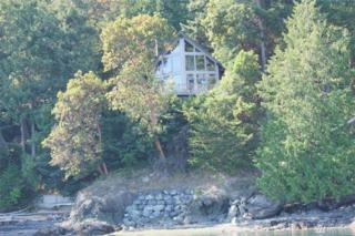 1319 Spring Point Rd, Orcas Island, WA 98243 (#975278) :: Ben Kinney Real Estate Team