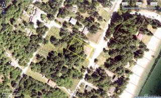 1012 E Herron Blvd, Lakebay, WA 98349 (#976285) :: Ben Kinney Real Estate Team