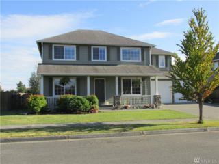 684 Hamlin Place, Burlington, WA 98233 (#976898) :: Ben Kinney Real Estate Team