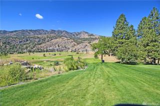 6 Frontage Rd, Pateros, WA 98846 (#977033) :: Ben Kinney Real Estate Team