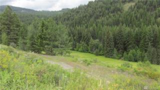 0-TBD St. Peters Cr. Rd S, Malo, WA 99150 (#979114) :: Ben Kinney Real Estate Team