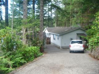 231 NE Lakeshore Dr S, Tahuya, WA 98588 (#980344) :: Ben Kinney Real Estate Team