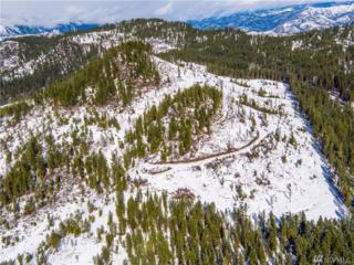 0 Camas Creek Rd, Peshastin, WA 98847 (#980749) :: Ben Kinney Real Estate Team