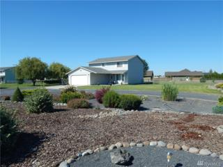 3174 NE Snow Goose Rd, Moses Lake, WA 98837 (#1007201) :: Ben Kinney Real Estate Team
