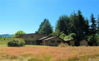 663 Whiskey Creek Beach Rd, Port Angeles, WA 98363 (#1014496) :: Ben Kinney Real Estate Team