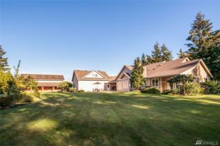 1200 Central Rd, Everson, WA 98247 (#1016933) :: Ben Kinney Real Estate Team