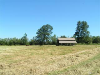 0-End of Ward Lane Parcel 4, Sequim, WA 98382 (#1021518) :: Ben Kinney Real Estate Team