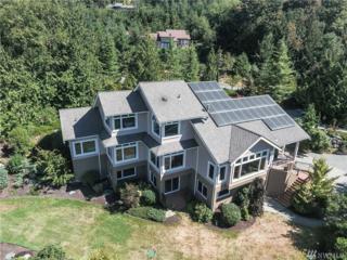 18258 Peregrine Lane, Mount Vernon, WA 98274 (#1022145) :: Ben Kinney Real Estate Team