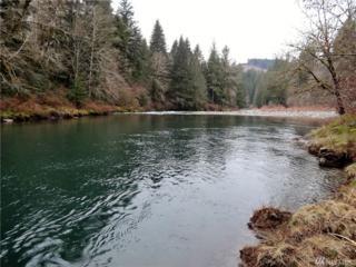 3 Kalama River Rd, Kalama, WA 98625 (#1024594) :: Ben Kinney Real Estate Team