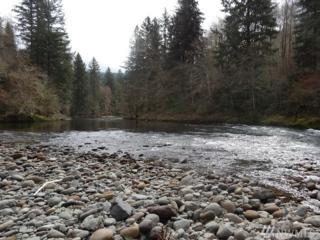 6 Kalama River Rd, Kalama, WA 98625 (#1024601) :: Ben Kinney Real Estate Team