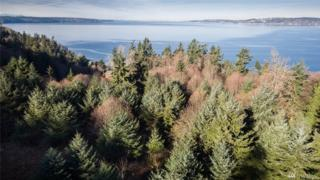 4633 SW Luana Beach Rd, Vashon, WA 98070 (#1028068) :: Ben Kinney Real Estate Team