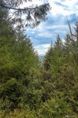 6-B NE Aquila Ridge Rd, Tahuya, WA 98588 (#1028113) :: Ben Kinney Real Estate Team