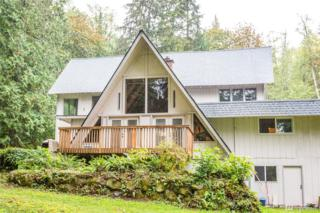 31435 SE Issaquah Fall City Rd, Fall City, WA 98024 (#1028808) :: Ben Kinney Real Estate Team