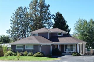 815 Castle Ave, Winthrop, WA 98862 (#1029615) :: Ben Kinney Real Estate Team